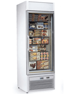 Expositor congelador 300...