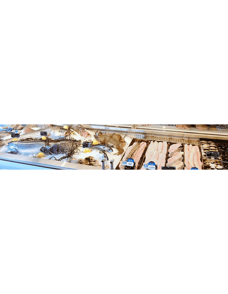 Maquinaria para Pescaderías